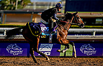 October 30, 2019: Breeders' Cup Juvenile Turf entrant Decorated Invader, trained by Christophe Clement, exercises in preparation for the Breeders' Cup World Championships at Santa Anita Park in Arcadia, California on October 30, 2019. Scott Serio/Eclipse Sportswire/Breeders' Cup/CSM