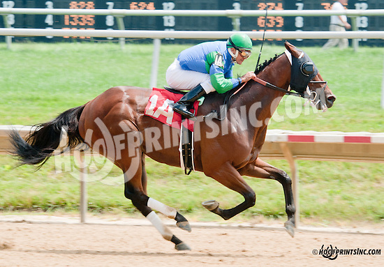 Back Room Deal winning at Delaware Park on 7/10/13