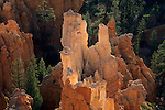 Morning light on Hoodoos in Bryce Ampetheater, from Inspiration Point, Bryce Canyon National Park, UTAH