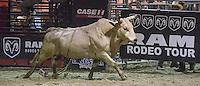 RAM Rodeo Finals'14