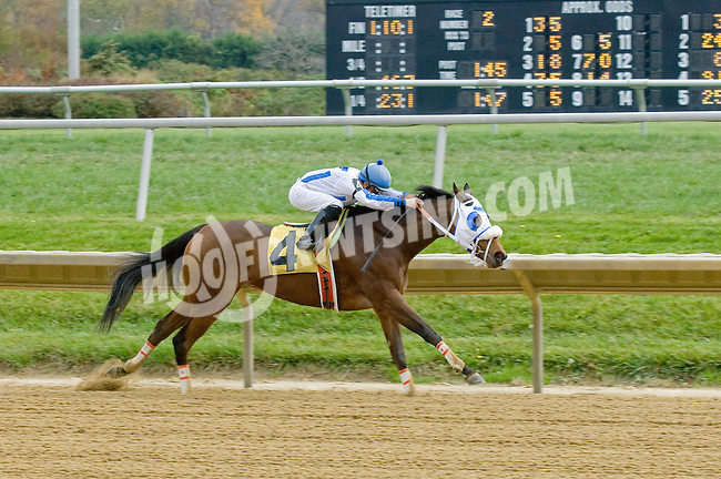 Grammy Pat winning at Delaware Park on 10/27/12..