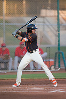 AZL Giants Black first baseman Francisco Medina (19) at bat during an Arizona League game against the AZL Angels at the San Francisco Giants Training Complex on July 1, 2018 in Scottsdale, Arizona. The AZL Giants Black defeated the AZL Angels by a score of 4-2. (Zachary Lucy/Four Seam Images)