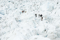 Guided group of tourists on Franz Josef Glacier,  Westland National Park, West Coast, UNESCO World Heritage Area, South Westland, New Zealand
