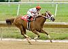 Wildcat Code winning at Delaware Park on 7/9/12