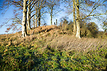 Neolithic long barrow in chalk downland countryside near East Kennett, Wiltshire, England, UK