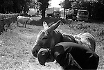 "Fred Abel. Bibury Gloucestershire Uk 1968. ""Fred Abel Circus. As seen on TV. Animal Antics ."
