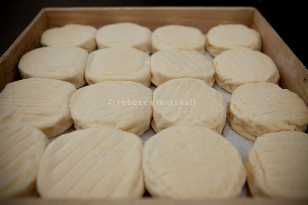 A crate of Saint Marcellin cheese at Jouvary, Le Marche Saint Antoine, Lyon, France, 15 January 2012