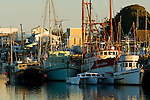 Commercial fishing boats docked in harbor along the waterfront in Morro Bay, California