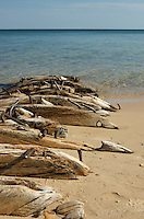 The remains of a shipwreck rest on the Lake Superior shoreline.