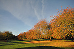 2nd November - Autumn Colours in Bourne