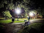 Night-time dog walking, Washington, DC
