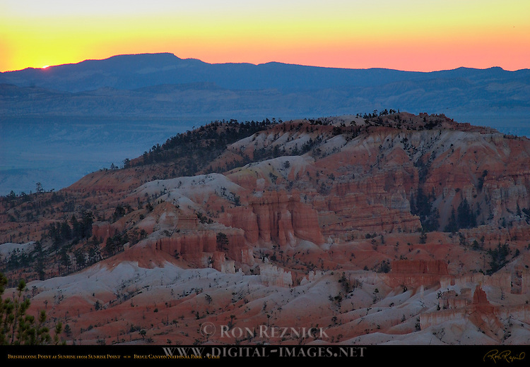 Bristlecone Point at Sunrise from Sunrise Point, Bryce Canyon National Park, Utah