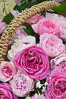 Pink Roses in basket