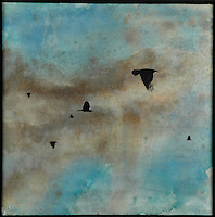Encaustic painting photography transfer of crows in cloudy sky by Jeff League.