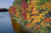 Red and sugar maples line the Ossipee River<br />
