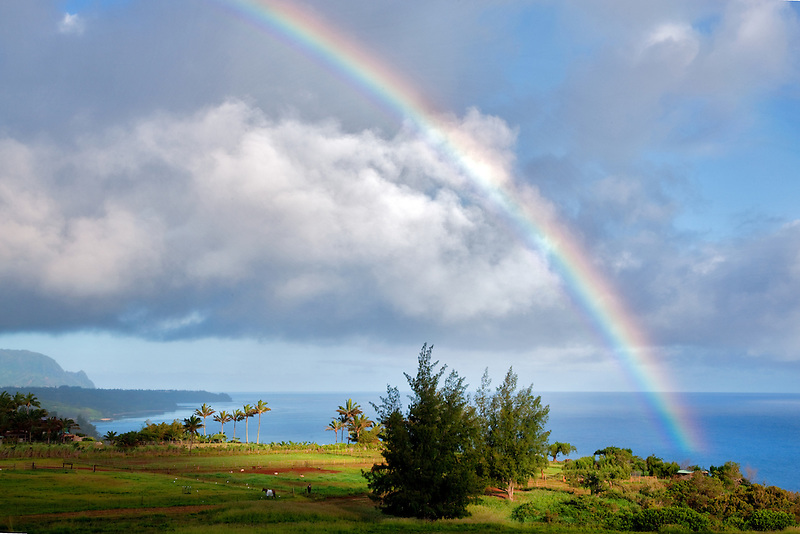 Rainbow at Kilauea Point, Kauai, Hawaii.