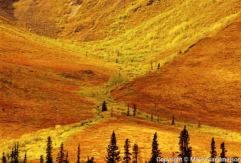 Detail of Tombstone Range in early fall on the Dempster Highway<br /> Dempster Highway<br /> Yukon<br /> Canada