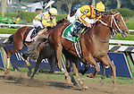 30 August 2008: Curlin and jockey Robby Albarado pull away from the pack for a win in the Woodward Stakes at Saratoga Race Course in Saratoga Springs, New York.