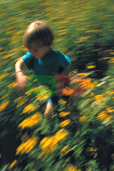 young boy running through flowers