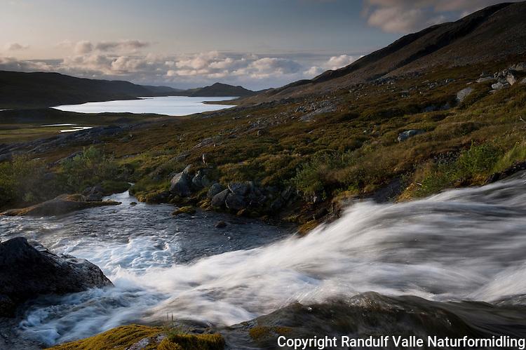 Bekk som renner ned i Koiefjordvannet på Nordkynn. ---- Stream and lake at Nordkynn.