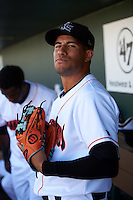 Jupiter Hammerheads Rony Cabrera (7) in the dugout before a game against the Palm Beach Cardinals on August 13, 2016 at Roger Dean Stadium in Jupiter, Florida.  Jupiter defeated Palm Beach 6-2.  (Mike Janes/Four Seam Images)