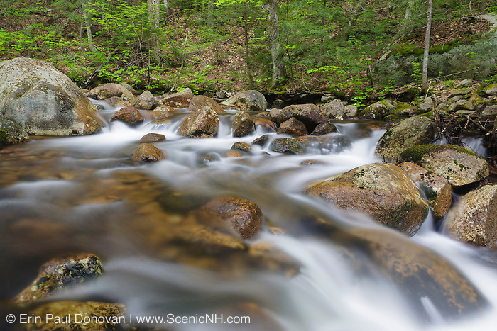 Douglas Brook along Bear Notch Road during the spring months in the White Mountains, New Hampshire USA