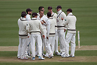 Tom Curran of Surrey celebrates with his team mates after taking the wicket of Alastair Cook during Surrey CCC vs Essex CCC, Specsavers County Championship Division 1 Cricket at the Kia Oval on 12th April 2019