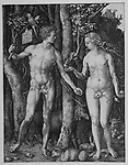Adam and Eve by Albrecht Dürer, 1504
