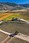 Vinhedos no Vale Colchagua. Chile. 2008. Foto de Cris Berger.