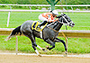 Out to Conquer You winning at Delaware Park on 5/21/12
