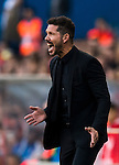 Coach Diego Simeone of Club Atletico de Madrid reacts during their La Liga match between Club Atletico de Madrid and Malaga CF at the Estadio Vicente Calderón on 29 October 2016 in Madrid, Spain. Photo by Diego Gonzalez Souto / Power Sport Images