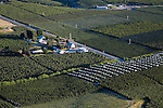 Aerial view of apple and cherry orchards in the Bray's Landing area near Orondo in Douglas County, Washington.  June 25, 2007