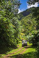 Raro Safari Tours, Rarotonga, Cook Islands