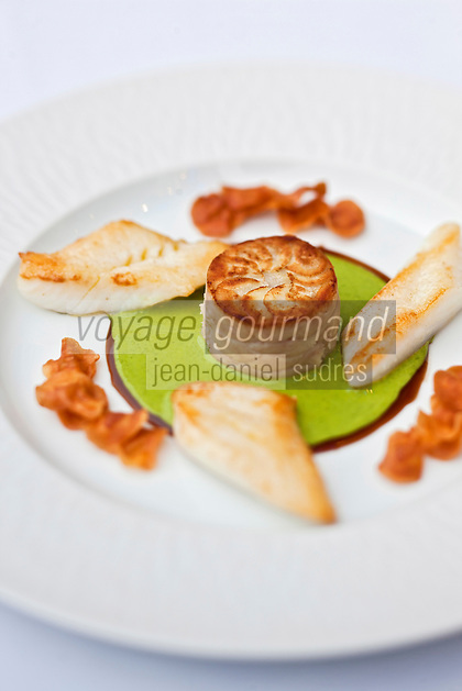 Europe/France/Bretagne/29/Finistère/Brest: Aiguillettes  de Saint-Pierre, galette de cerfeuil tubéreux et jus de cresson, recette de Yvon Morvan restaurant: L'Armen