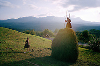 ROMANIA / Maramures / Budesti / September 2006..Haymaking at the end of the summer...© Davin Ellicson / Anzenberger