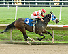 Tale of the Fox winning at Delaware Park on 9/30/09