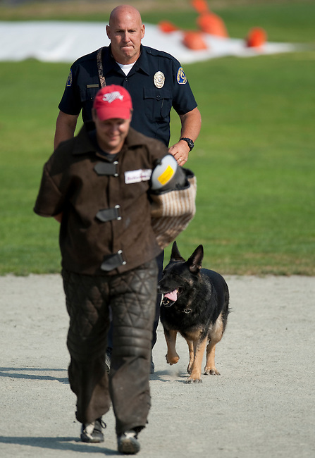 Vancouver, Canada, Aug 6th 2009. World Police and Fire Games, Police Service Dog Competition.  Ken Greenleaf and dog, Valor, after apprehending the suspect, escort him to the designated area during the Protection portion of the competition.  Valor is a four-year-old German Shepherd. Ken and Valor are from the Redondo Beach Police Department in California, USA.  They won first place in the Obedience, Protection, and Search portions of the competition and also first place in the Overall, for a total of four gold medals.   Photo by Gus Curtis