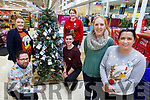 Elaine Mooney with her friends in Tesco&rsquo;s in Manor West with her Christmas Tree in aid of St Vincent de Paul on Monday.<br /> Front l-r, Elaine Mooney, Anna O&rsquo;Sullivan (Tesco Store Manager), Eric Rowan and Darragh McGinley.<br /> Back l-r, Louise O&rsquo;Connor and Mary Sheehan.