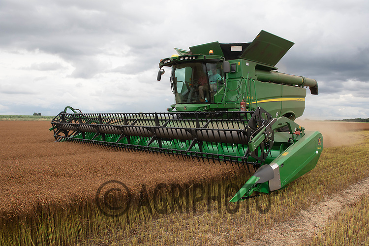 25.7.2020 Harvesting Linseed in Lincolnshire ©Tim Scrivener Photographer 07850 303986<br />      ....Covering Agriculture In The UK.