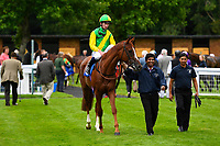 Keepers Choice ridden by Oisin Murphy and trained by Denis Coakley is led into the winners enclosure after winning the Sorvio Insurance Maiden Fillies' Stakes, during Afternoon Racing at Salisbury Racecourse on 7th August 2017
