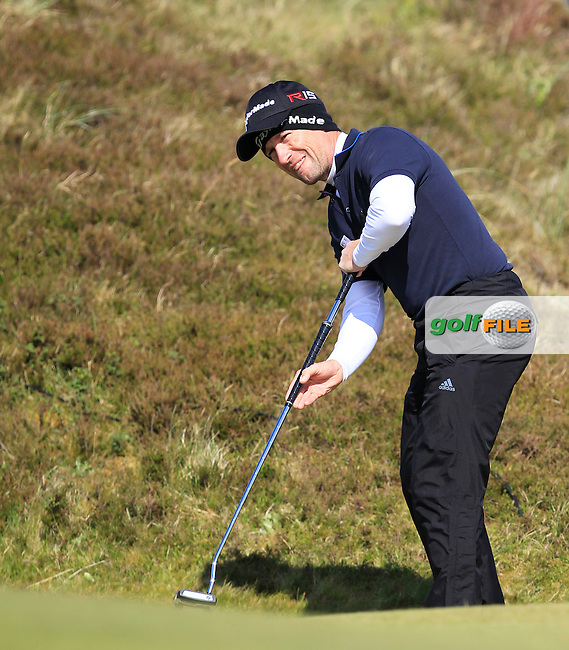 Steve Webster (ENG) on the 8th green during Round 1 of the 2015 Dubai Duty Free Irish Open, Royal County Down Golf Club, Newcastle Co Down, Northern Ireland. 28/05/2015<br /> Picture Thos Caffrey, www.golffile.ie