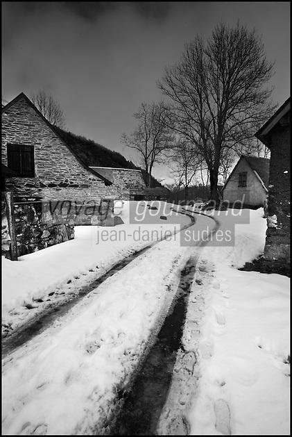 Europe/France/Midi-Pyrénées/65/Hautes-Pyrénées/Vallée du Louron/Env de Loudenvielle: Bordes d'Altitude vers le Col d'Azet