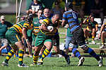 Falakiko Balahame has to contend with Robert Katu and Kiniviliame Bila as he tries to head upfield. Counties Manukau Club Rugby game between Pukekohe and Onewhero played at Colin Lawrie Fields Pukekohe on Saturday 19th March 2011..Pukekohe won 37 - 8.