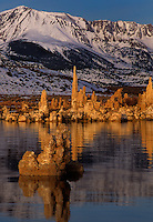 761950051 south tufas at sunrise provide a foreground for the snow covered eastern sierras at mono lake state park california