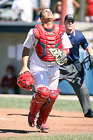 Sept. 3rd, 2007:  Steve Gonzalez of the Batavia Muckdogs, Short-Season Class-A affiliate of the St. Louis Cardinals at Dwyer Stadium in Batavia, NY.  Photo by:  Mike Janes/Four Seam Images