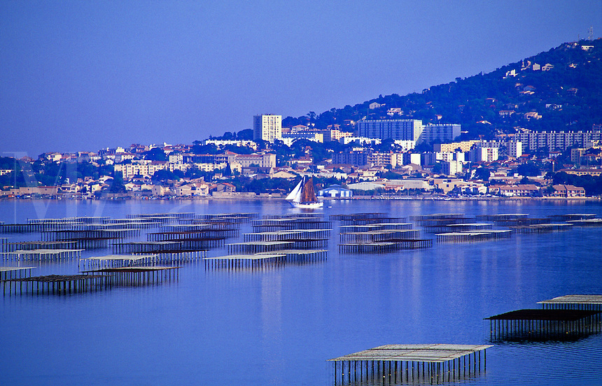 Oyster beds at Bouzigues on the Etang de Thau with Sete in the background.  Languedoc Roussillon. Herault. France.  Capital of the shellfish industry..