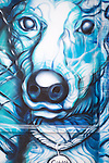 Kensington Grafitti