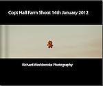 Copt Hall Farm Shoot  14th January 2012