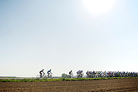 tail of the peloton<br /> <br /> Amstel Gold Race 2014