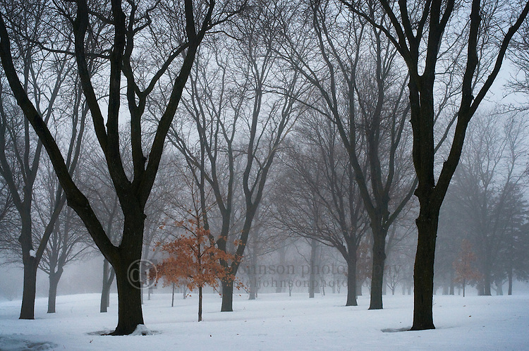 """16 January 2010 -- Fog forms over snow in the evening at Memorial Park in Omaha, Neb. on January 16. """"Advection fog"""" is formed when warm air passes over a cool surface.  PHOTO/Daniel Johnson (Copyright 2010 Daniel Johnson)"""